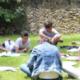 Jeunes en rond dans l'herbe